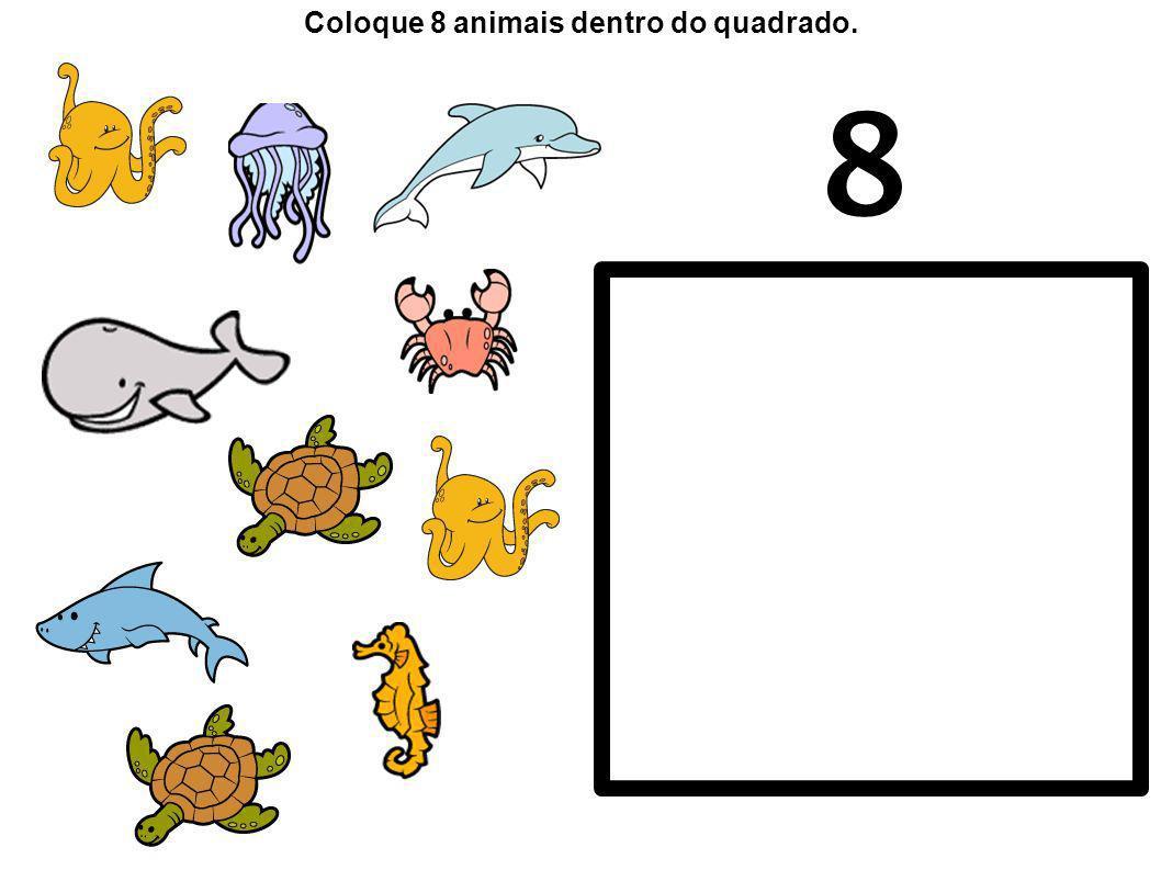 Coloque 8 animais dentro do quadrado.