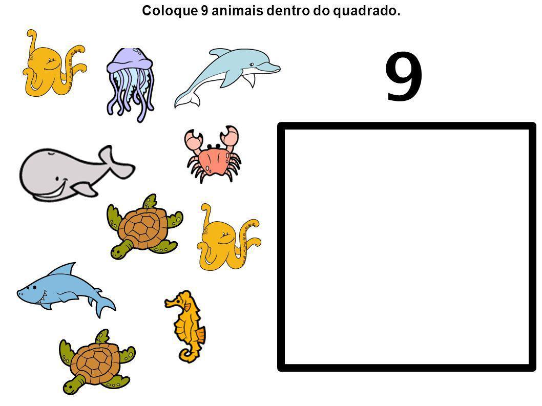 Coloque 9 animais dentro do quadrado.