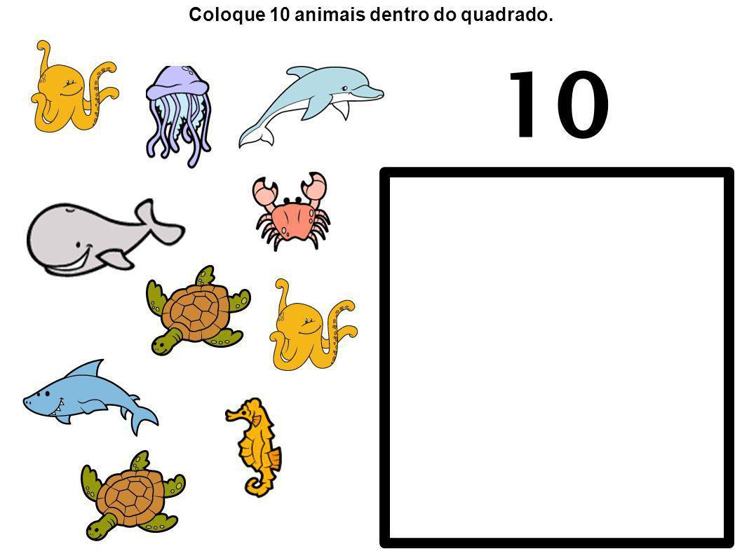 Coloque 10 animais dentro do quadrado.