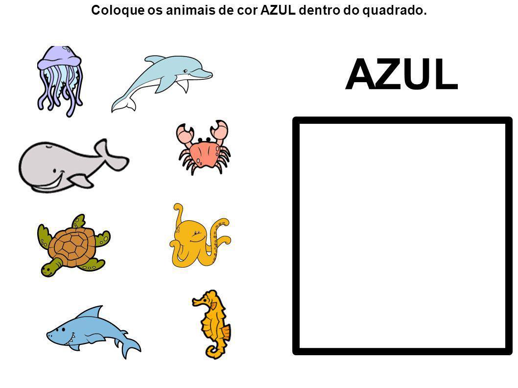 Coloque os animais de cor AZUL dentro do quadrado.