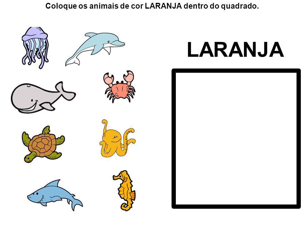 Coloque os animais de cor LARANJA dentro do quadrado.