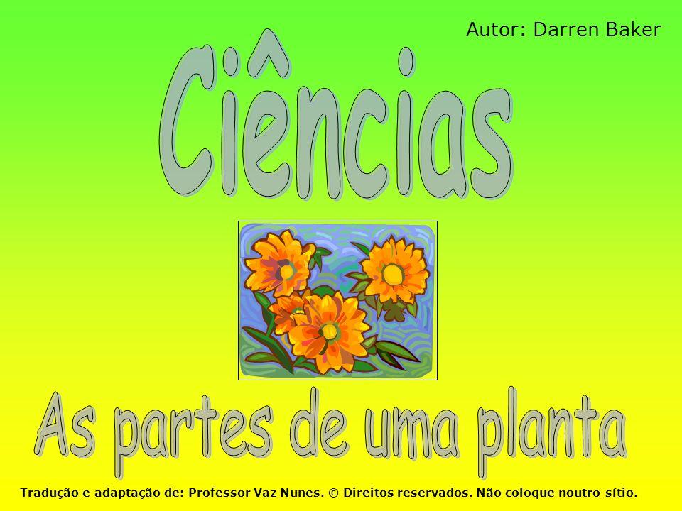 Ciências As partes de uma planta Autor: Darren Baker