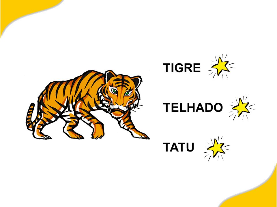 TIGRE TELHADO TATU