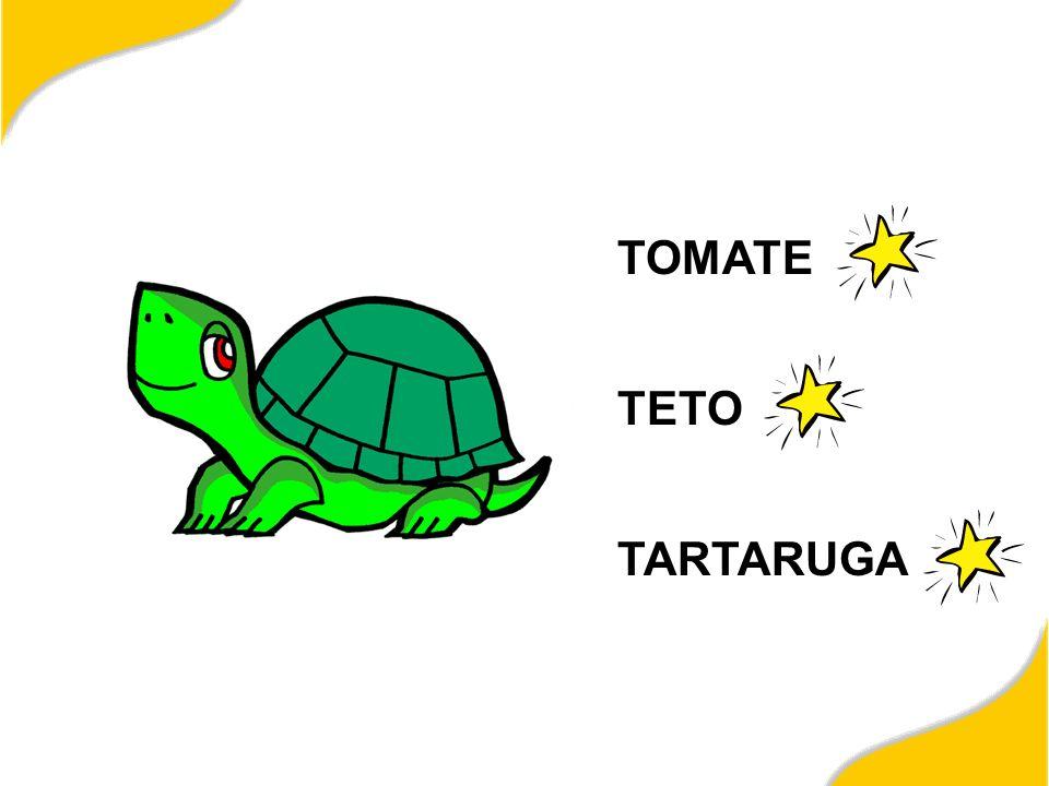 TOMATE TETO TARTARUGA