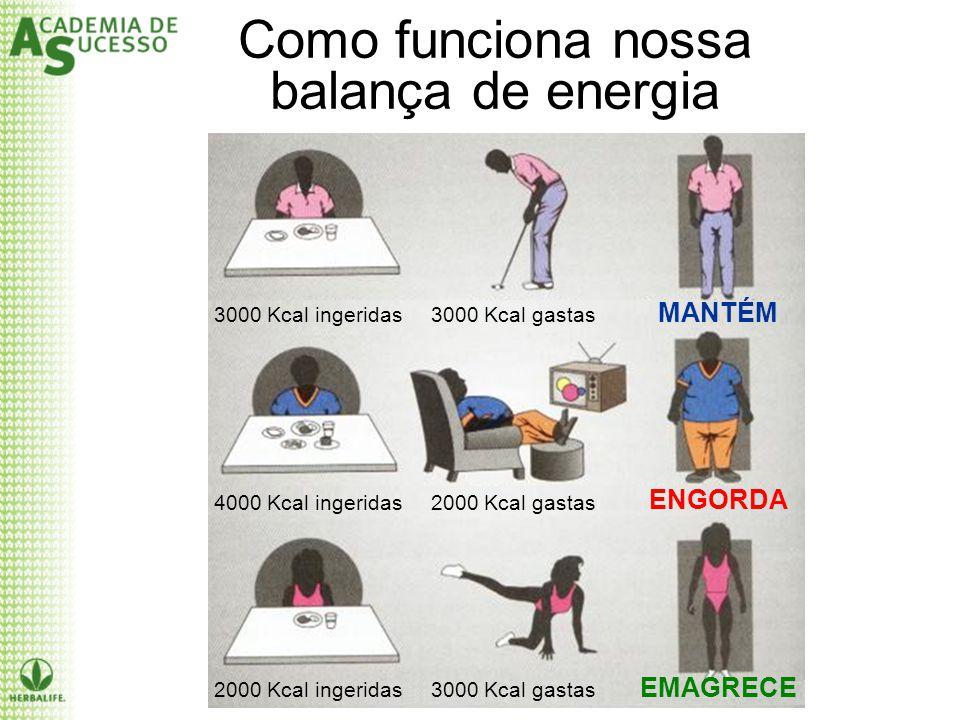 Como funciona nossa balança de energia