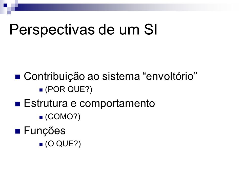 Perspectivas de um SI Contribuição ao sistema envoltório