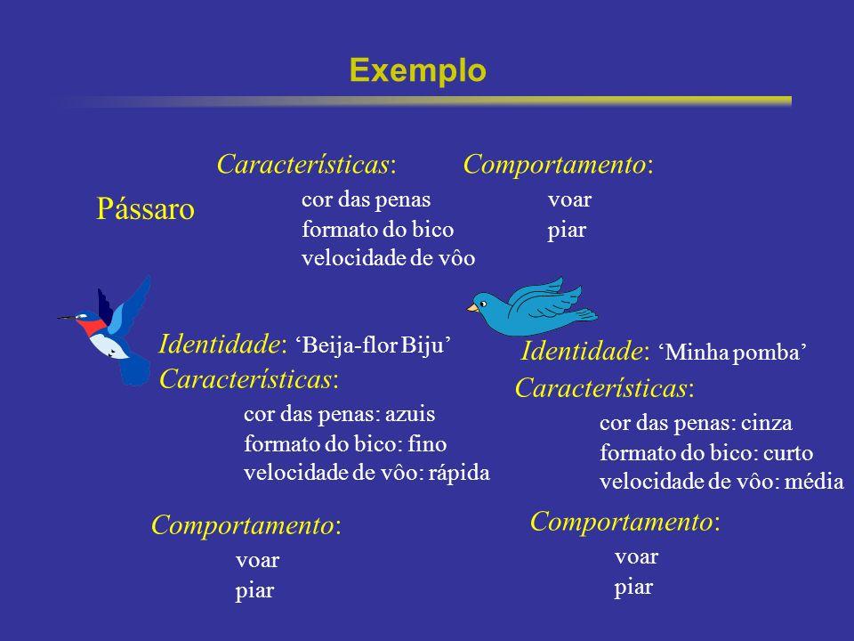 Exemplo Pássaro Características: cor das penas Comportamento: voar