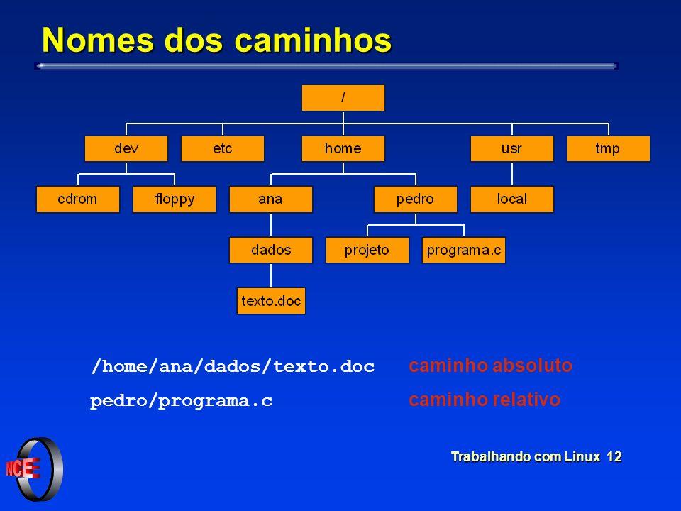 Nomes dos caminhos /home/ana/dados/texto.doc caminho absoluto
