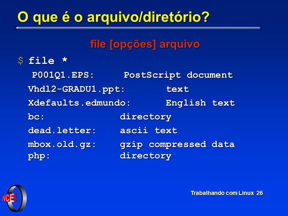 O que é o arquivo/diretório