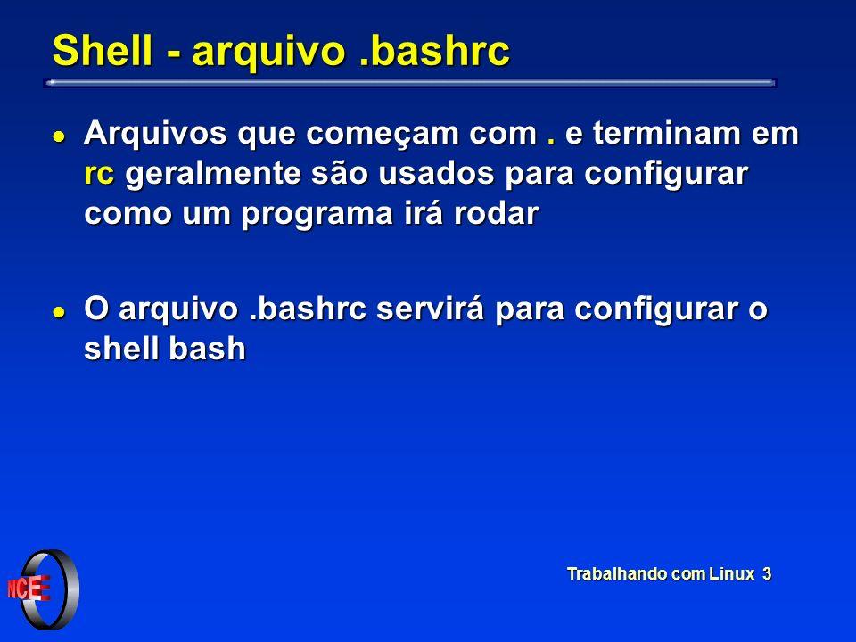 Shell - arquivo .bashrc Arquivos que começam com . e terminam em rc geralmente são usados para configurar como um programa irá rodar.