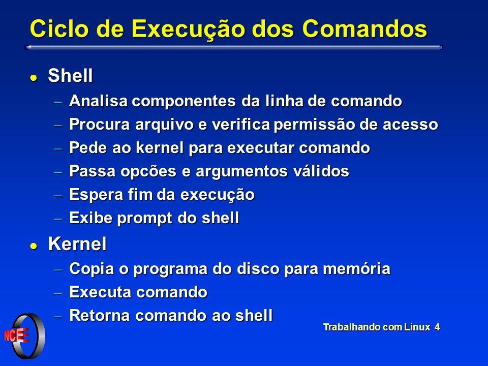 Ciclo de Execução dos Comandos