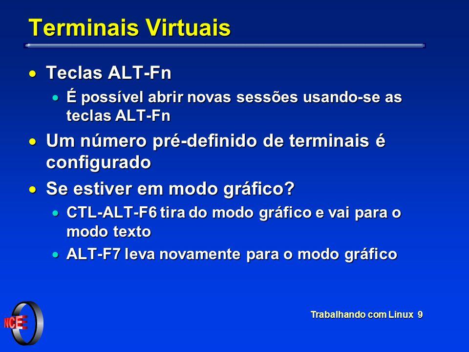 Terminais Virtuais Teclas ALT-Fn