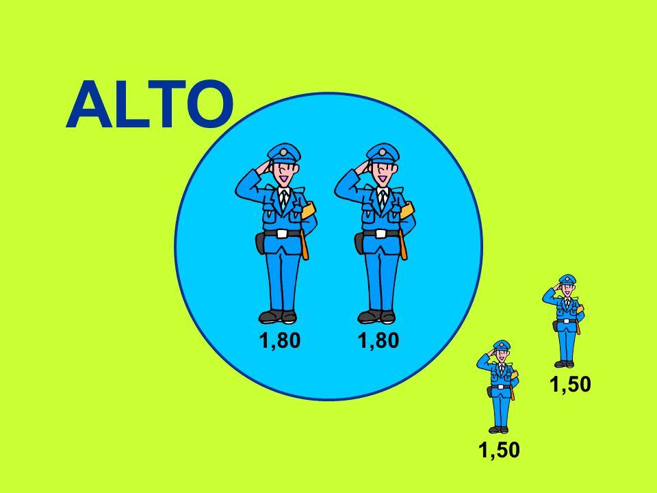 ALTO 1,80 1,80 1,50 1,50