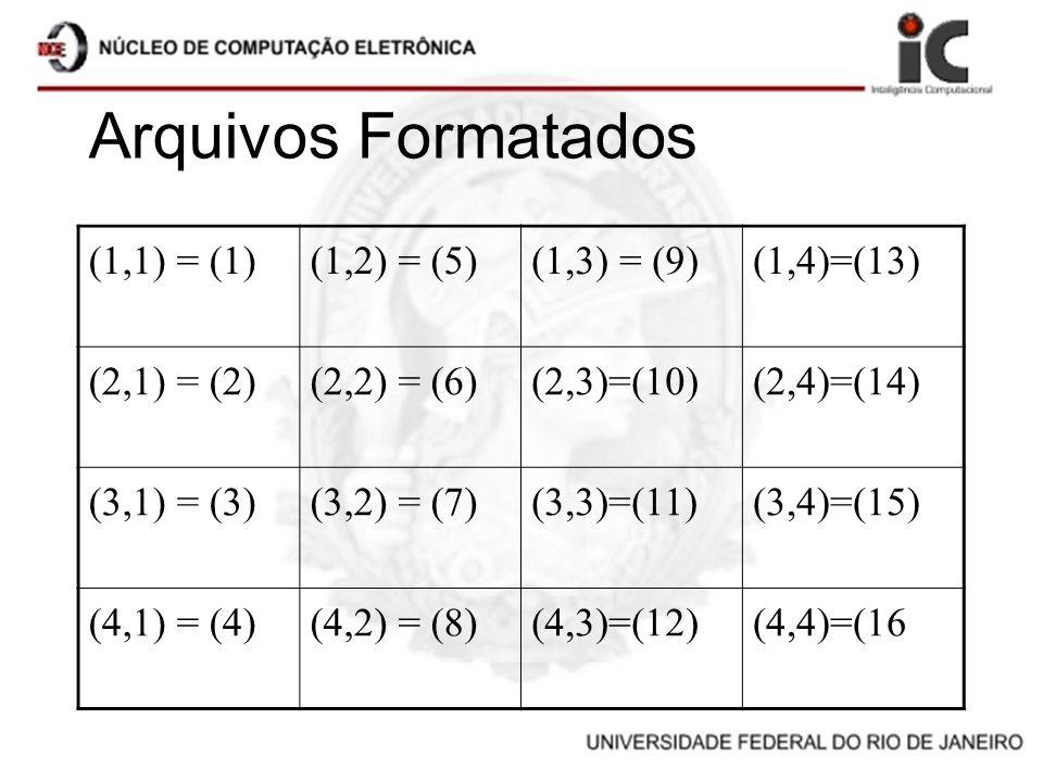 Arquivos Formatados (1,1) = (1) (1,2) = (5) (1,3) = (9) (1,4)=(13)