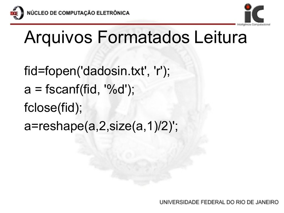 Arquivos Formatados Leitura