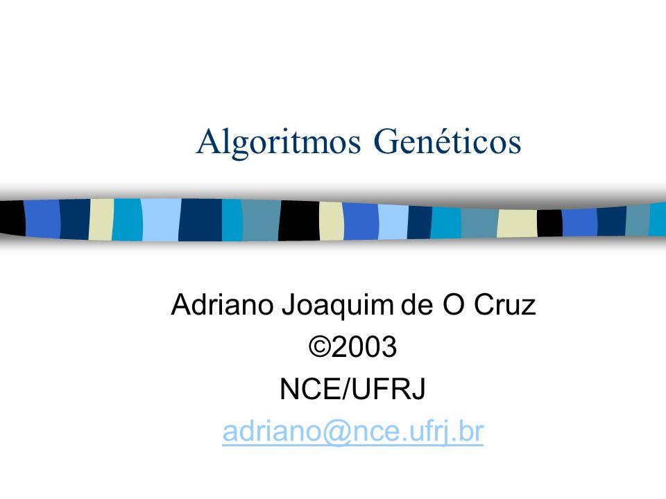 Adriano Joaquim de O Cruz