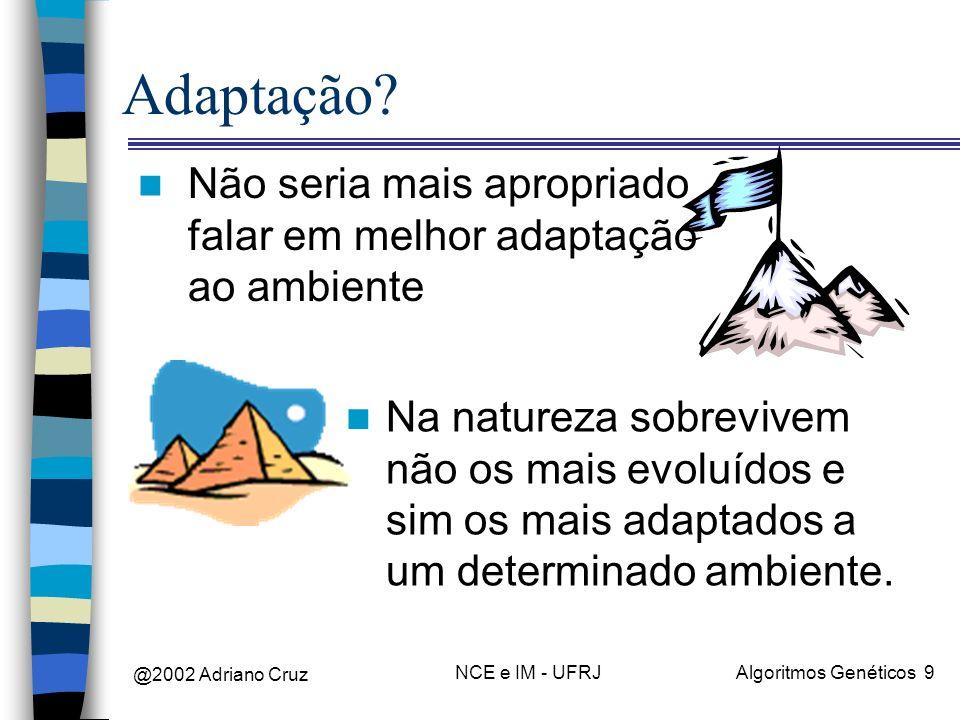 Adaptação Não seria mais apropriado falar em melhor adaptação ao ambiente.