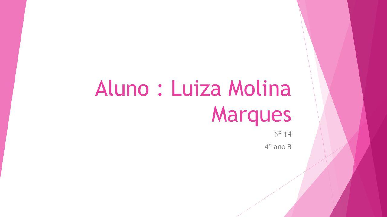 Aluno : Luiza Molina Marques