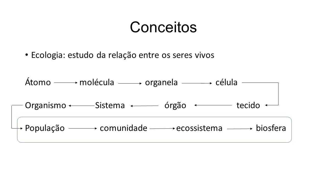 Conceitos Ecologia: estudo da relação entre os seres vivos