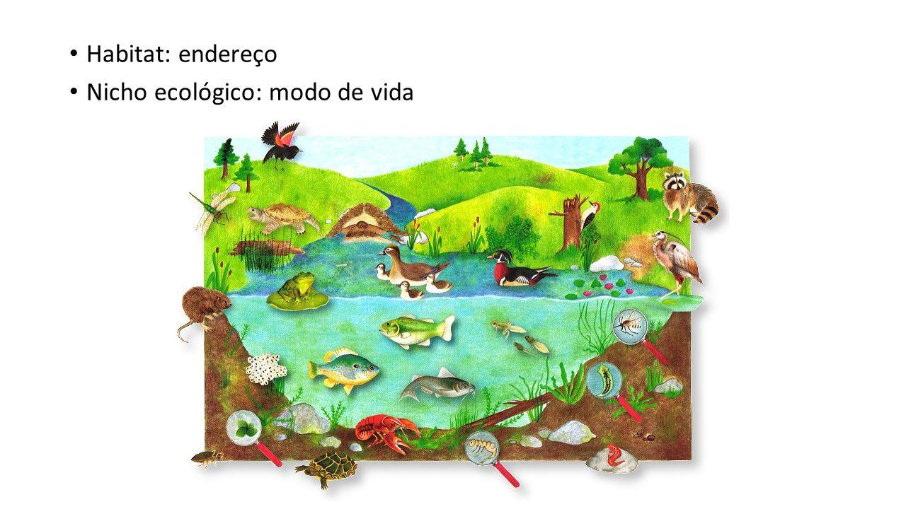 Habitat: endereço Nicho ecológico: modo de vida