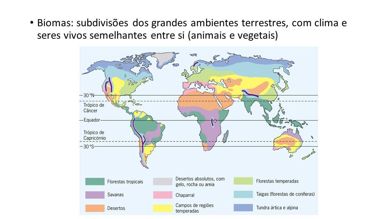 Biomas: subdivisões dos grandes ambientes terrestres, com clima e seres vivos semelhantes entre si (animais e vegetais)