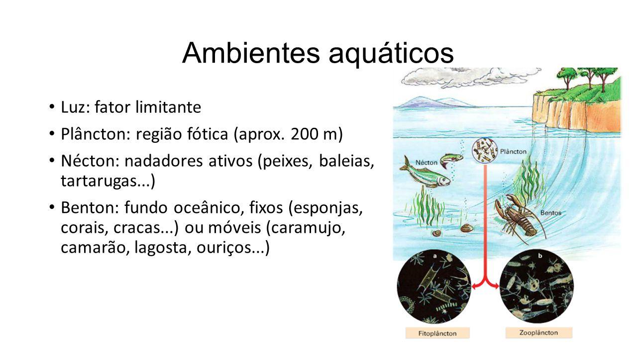 Ambientes aquáticos Luz: fator limitante