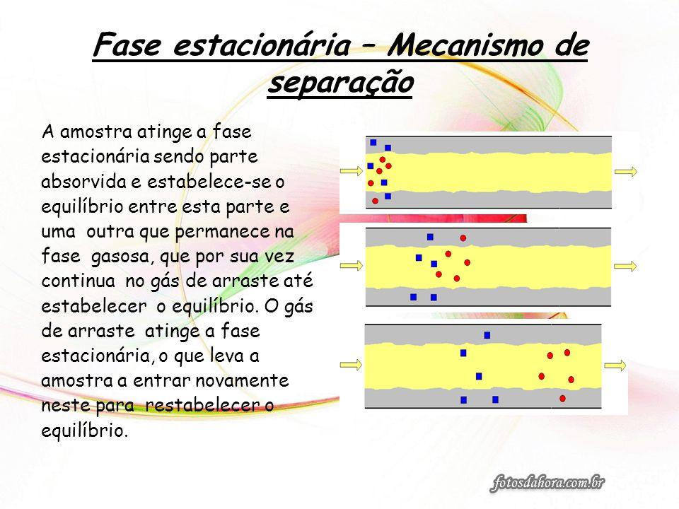 Fase estacionária – Mecanismo de separação