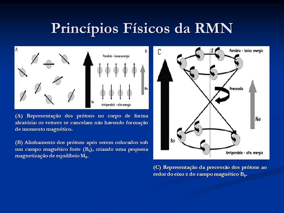 Princípios Físicos da RMN