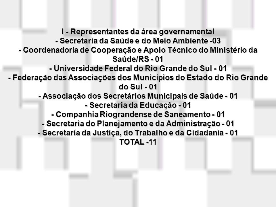 I - Representantes da área governamental