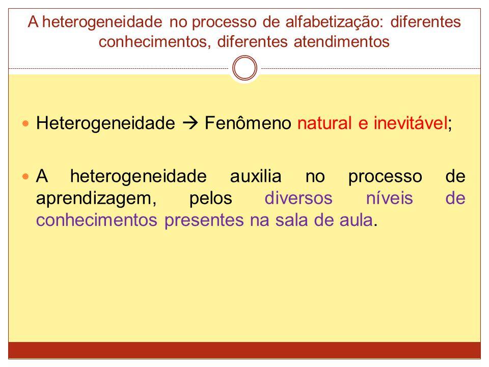 Heterogeneidade  Fenômeno natural e inevitável;