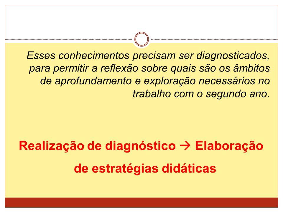 Realização de diagnóstico  Elaboração de estratégias didáticas