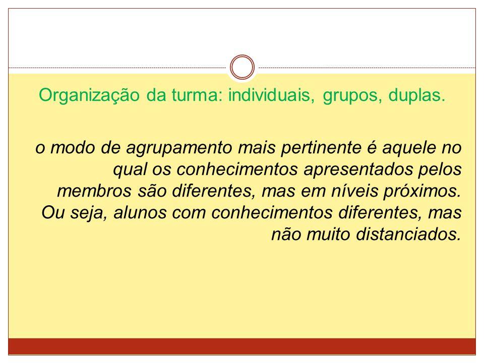 Organização da turma: individuais, grupos, duplas.