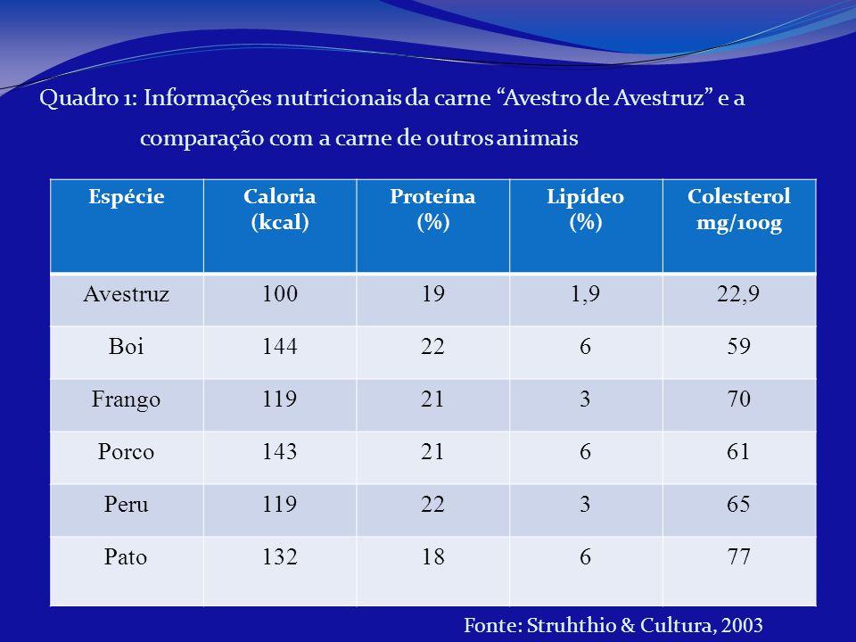 Quadro 1: Informações nutricionais da carne Avestro de Avestruz e a