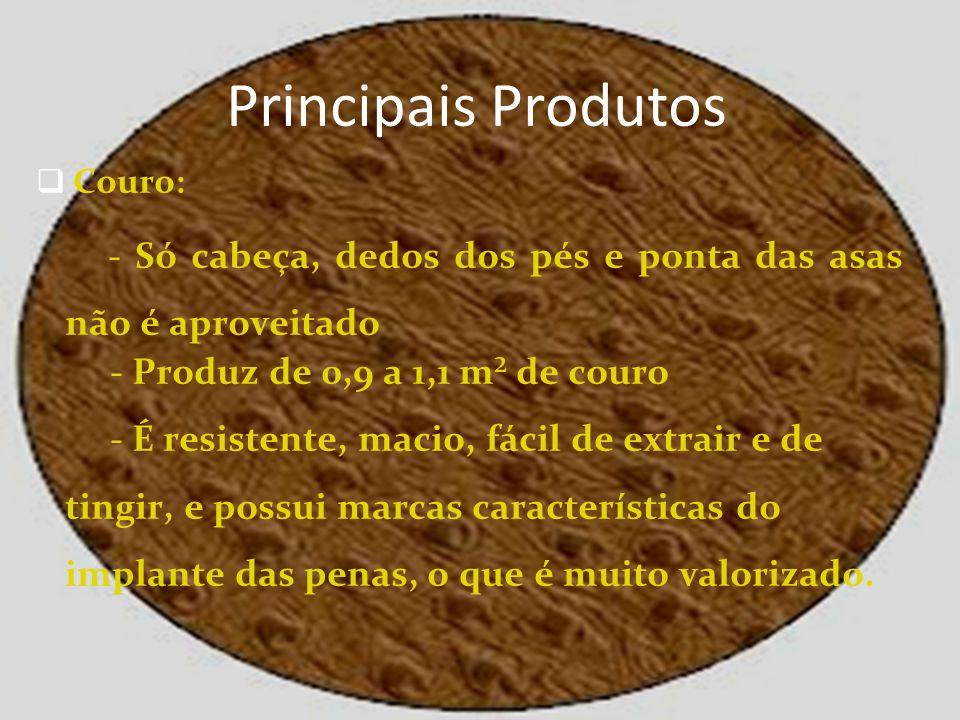 Principais Produtos Couro: - Só cabeça, dedos dos pés e ponta das asas não é aproveitado. - Produz de 0,9 a 1,1 m² de couro.