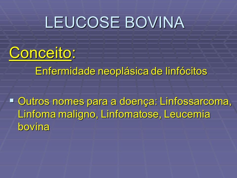 LEUCOSE BOVINA Conceito: Enfermidade neoplásica de linfócitos