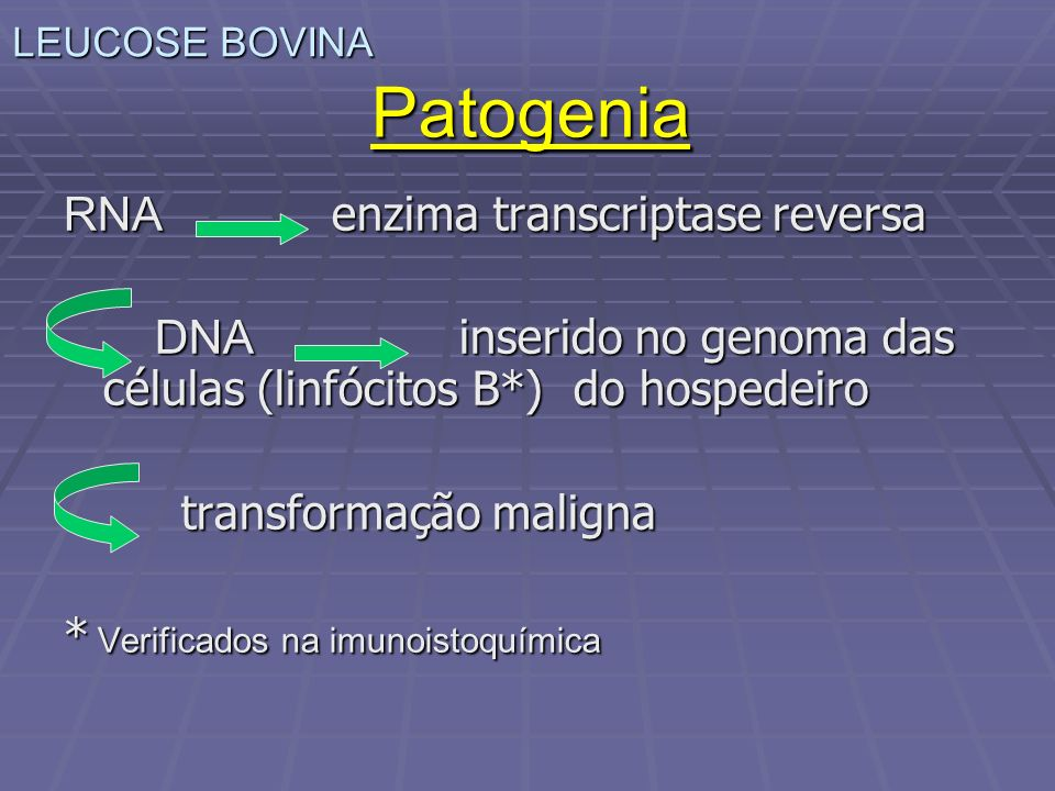 Patogenia RNA enzima transcriptase reversa