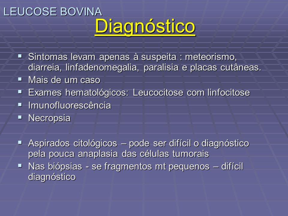 Diagnóstico LEUCOSE BOVINA