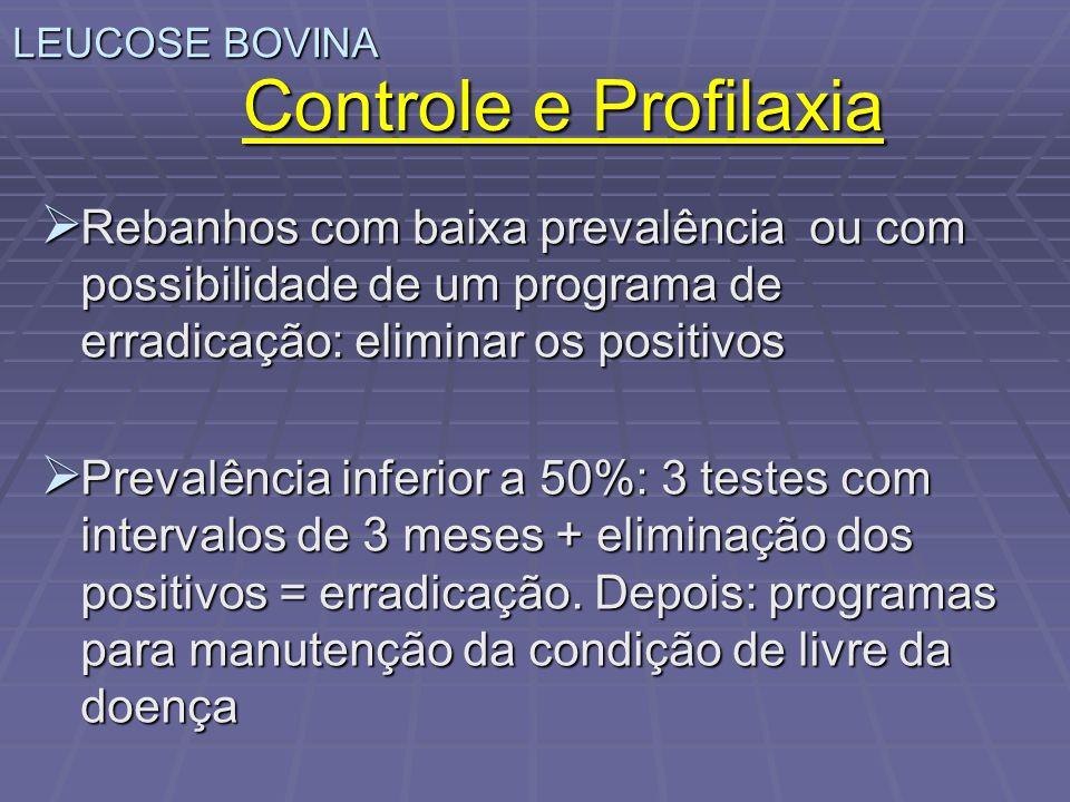 LEUCOSE BOVINA Controle e Profilaxia. Rebanhos com baixa prevalência ou com possibilidade de um programa de erradicação: eliminar os positivos.