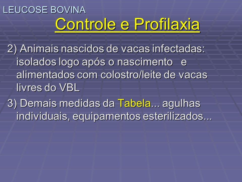 LEUCOSE BOVINA Controle e Profilaxia.
