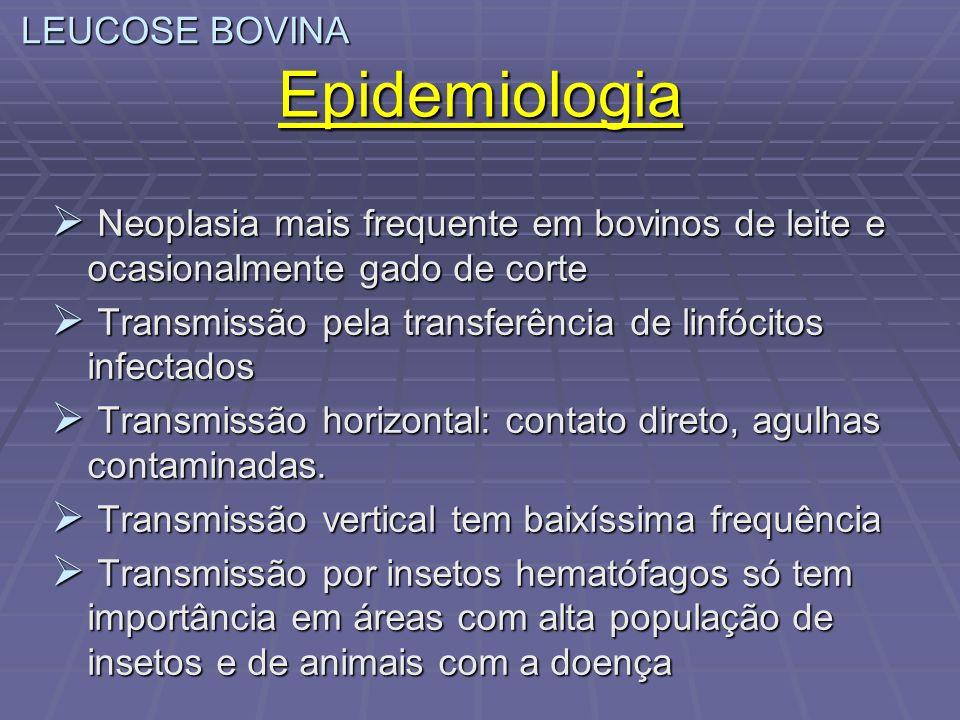 Epidemiologia LEUCOSE BOVINA