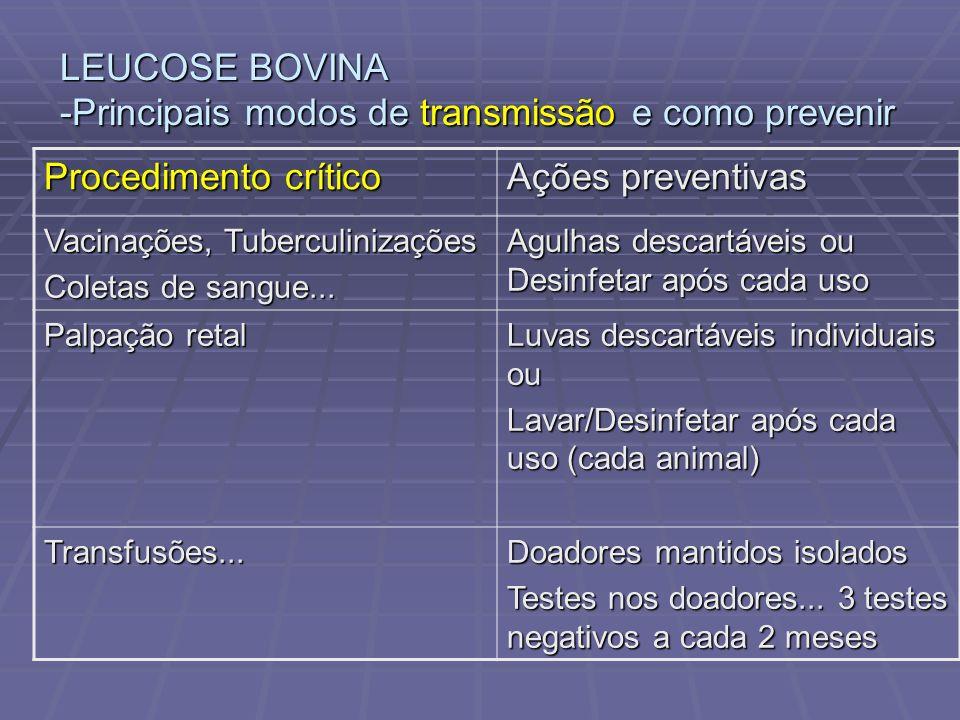LEUCOSE BOVINA -Principais modos de transmissão e como prevenir