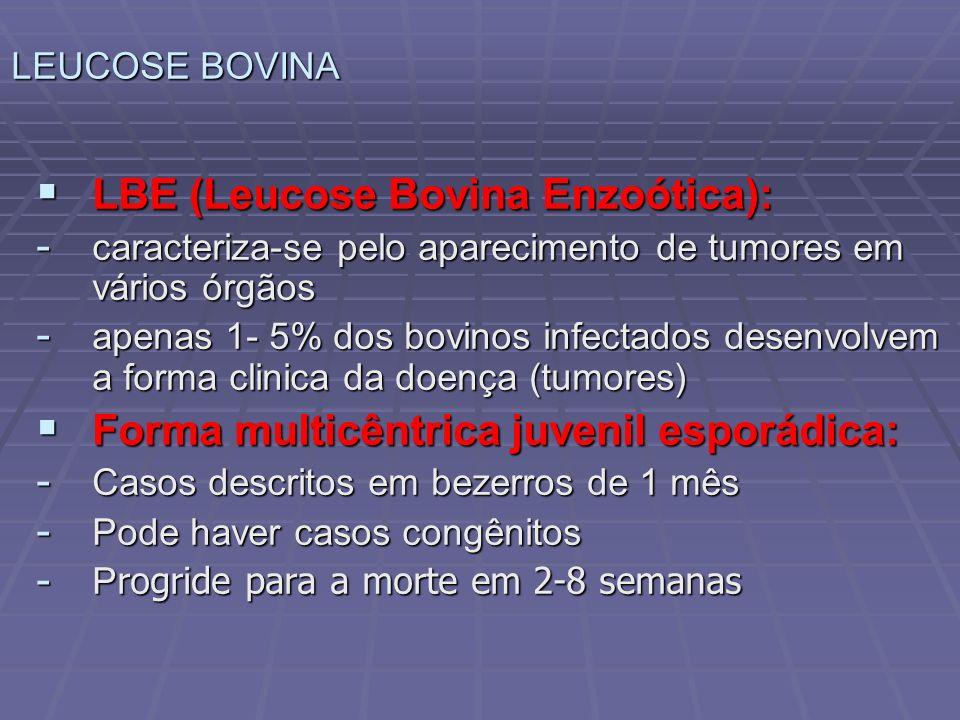 LBE (Leucose Bovina Enzoótica):