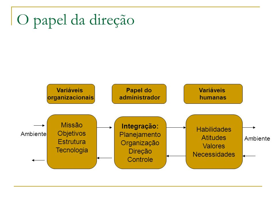 O papel da direção Missão Integração: Habilidades Objetivos