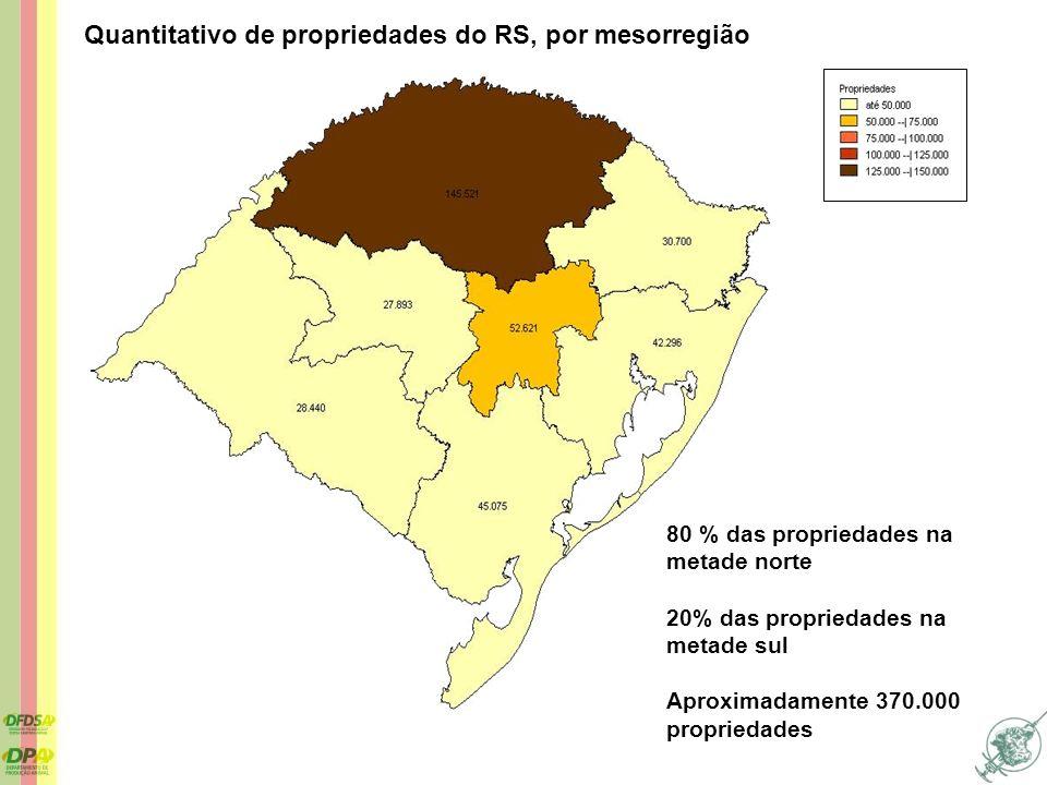Quantitativo de propriedades do RS, por mesorregião