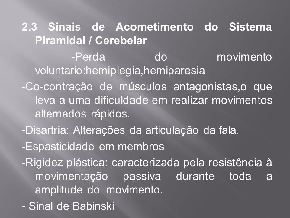 2.3 Sinais de Acometimento do Sistema Piramidal / Cerebelar
