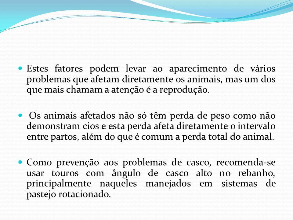 Estes fatores podem levar ao aparecimento de vários problemas que afetam diretamente os animais, mas um dos que mais chamam a atenção é a reprodução.