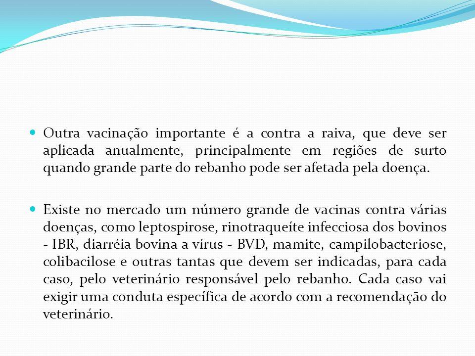 Outra vacinação importante é a contra a raiva, que deve ser aplicada anualmente, principalmente em regiões de surto quando grande parte do rebanho pode ser afetada pela doença.