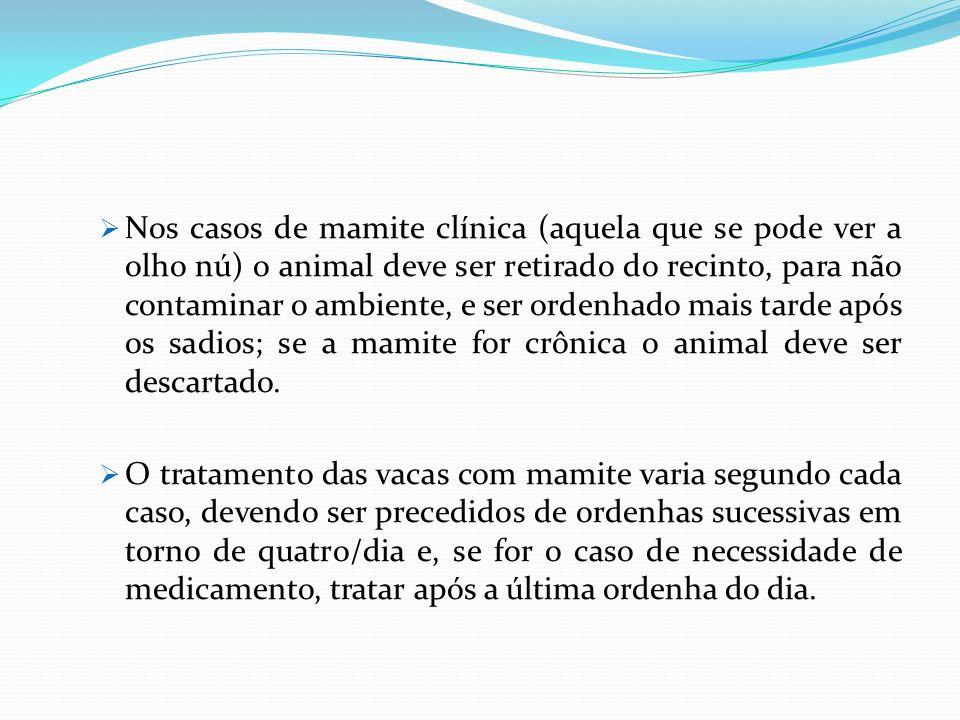 Nos casos de mamite clínica (aquela que se pode ver a olho nú) o animal deve ser retirado do recinto, para não contaminar o ambiente, e ser ordenhado mais tarde após os sadios; se a mamite for crônica o animal deve ser descartado.