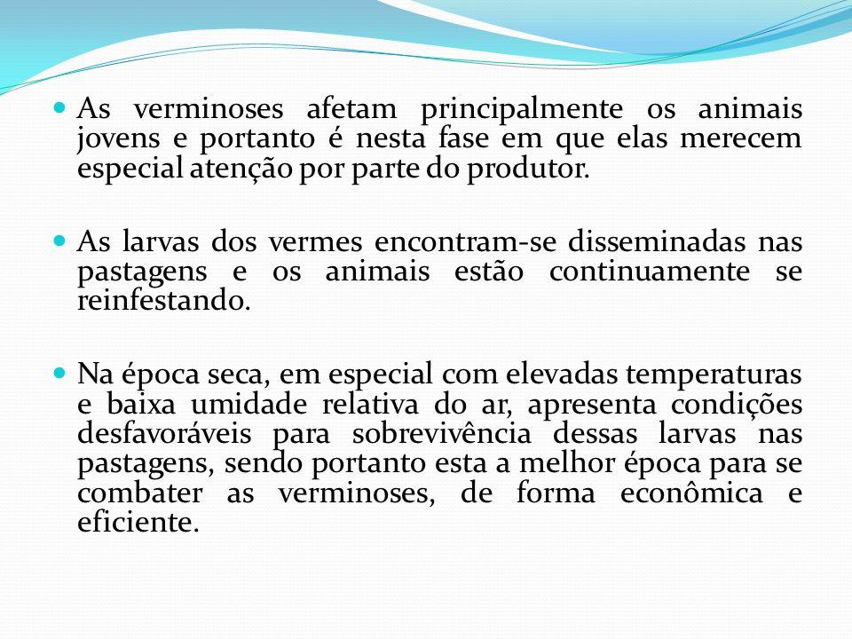 As verminoses afetam principalmente os animais jovens e portanto é nesta fase em que elas merecem especial atenção por parte do produtor.