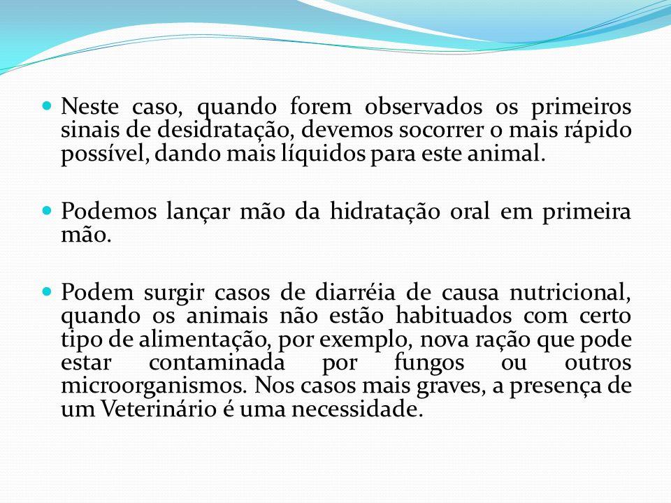 Neste caso, quando forem observados os primeiros sinais de desidratação, devemos socorrer o mais rápido possível, dando mais líquidos para este animal.